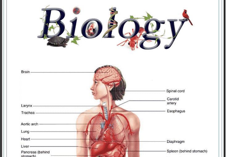 BIOLOGY HANDWRITTEN NOTES- DOWNLOAD FREE PDF - Edu Journal
