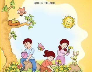 ganit ka jaadu, math magic, marigold, english raindrops, hindi rimjhim, ncert books for all classes, Environmental Studies Aas Paas, Environmental Studies Looking Around